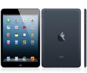 iPad Mini (Wi-Fi + 4G), 16 GB, Harmaa, Tuotteen ikä: 42 kuukautta