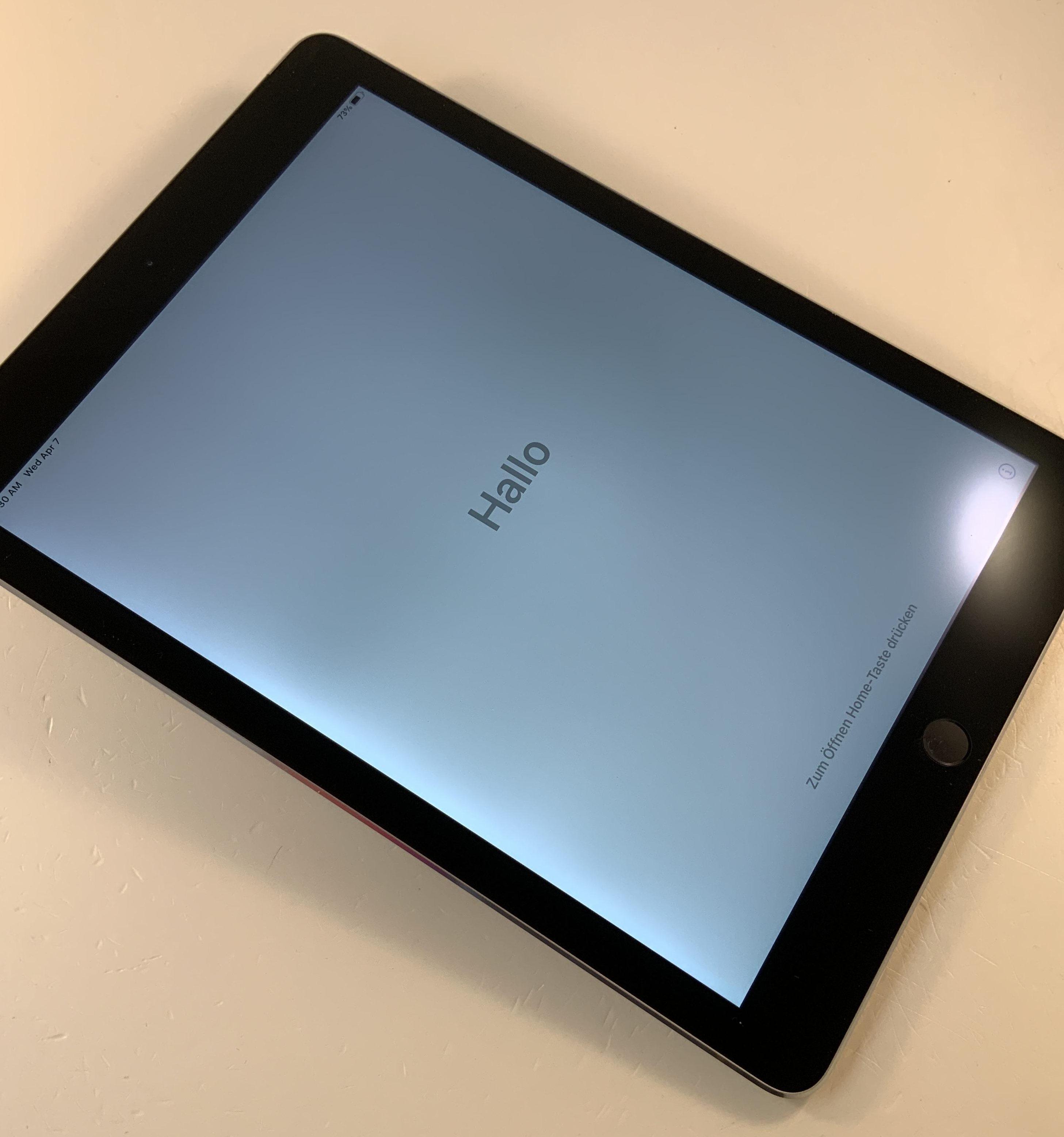 iPad Air 2 Wi-Fi + Cellular 64GB, 64GB, Space Gray, obraz 5