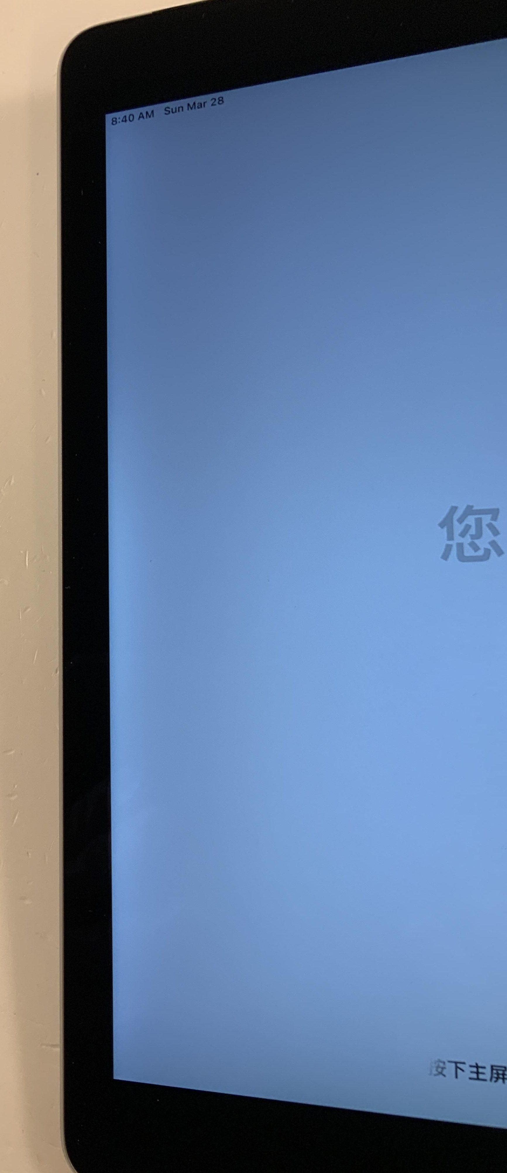 iPad Air 2 Wi-Fi + Cellular 64GB, 64GB, Space Gray, immagine 4